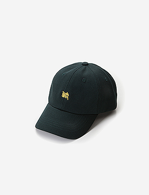 TAGGING CURVED CAP - GREEN brownbreath